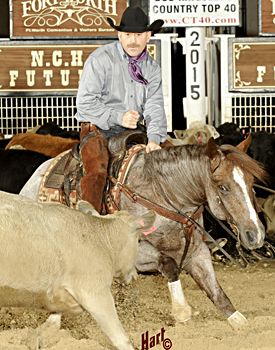 2015 NCHA Futurity Champion Stevie Rey Von, by Metallic Cat. Hart Photography.