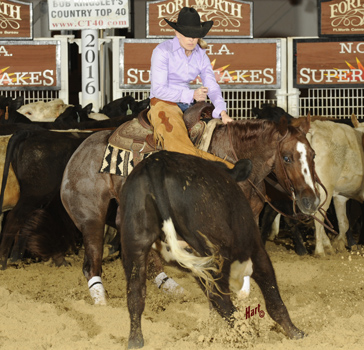 Jackie Davison and Cajun Grace won the Unlimited Amateur at the Super Stakes Classic. Hart Photography.