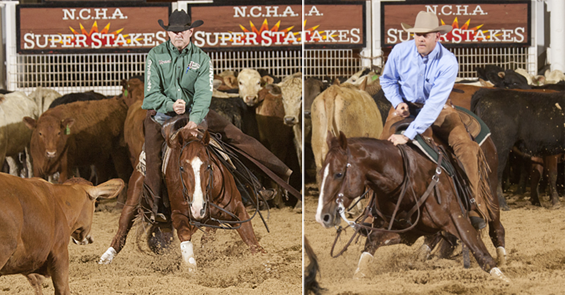 Last year, Smooth Talkin Style and Dont Stopp Believin were co-champions of the NCHA Super Stakes.